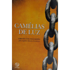 CAMÉLIAS DE LUZ