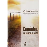 CAMINHO, VERDADE E VIDA ( Bolso )