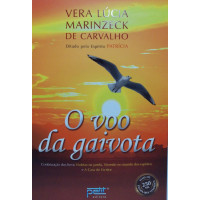 VOO DA GAIVOTA